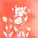 abstrakt vallmor Royaltyfria Bilder