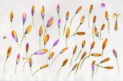 Abstrakt vattenfärg på papper Sidor gulnar, gör grön, violeten och p Arkivbild