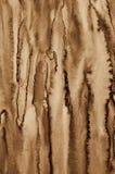 Abstrakt vattenfärg på pappers- textur som bakgrund I Sepiaton Royaltyfria Foton