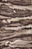 Abstrakt vattenfärg på pappers- textur som bakgrund I Sepiaton Royaltyfri Fotografi