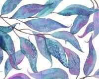 Abstrakt vattenfärgbakgrund med tilltrasslade eukalyptussidor Royaltyfria Bilder