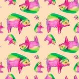 Abstrakt vattenfärgillustration av ett mångfärgat svin Isolerat på persikabakgrund seamless modell royaltyfri illustrationer