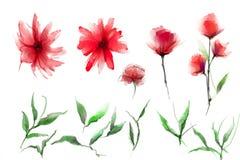 Abstrakt vattenfärgmålningblomma och blad Illustrationen som isoleras av våren, sommarblommor, målar design över vit bakgrund stock illustrationer