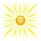 Abstrakt vektor för Sunburst. Arkivbilder
