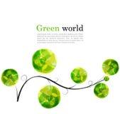 Abstrakt vektorbakgrund med filialen och ljust - gröna beståndsdelar för design Fotografering för Bildbyråer