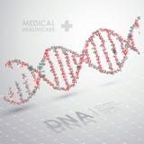 Abstrakt vektorDNAformel läkarundersökning för bakgrundsomsorgshälsa Royaltyfri Foto