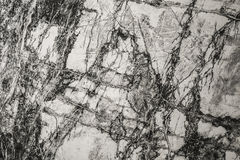 Abstrakt vit marmortexturvägg för design modell för lyxig produkt för bakgrund eller för hud Royaltyfri Foto