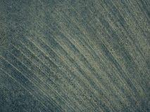 Abstrakt vit- och grå färgtappning av marmormodellen texturerar bakgrund Arkivfoton