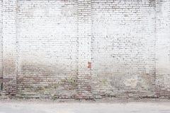 Abstrakt vit tegelstenbakgrund Royaltyfri Bild