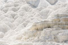 Abstrakt vit texturbakgrund Travertineterrass, Mammoth Hot Springs, Yellowstone Royaltyfri Fotografi