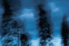 Abstrakt Wiatr dmucha drzewa Obraz Royalty Free