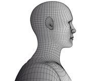 Abstrakt wireframevektor för mänskligt huvud 3d Arkivbild