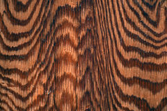 Abstrakt wood kornmodell Royaltyfri Foto