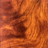 Abstrakt wood textur med fokusen på träts korn Rotar trä Royaltyfri Fotografi