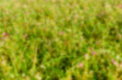 Abstrakt zamazujący kwiatu tło Obrazy Royalty Free