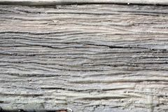 Abstrakt zamknięty w górę szarego starego drewnianego tła zdjęcie royalty free