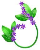 Abstrakt zieleni gałąź z liśćmi jako dekoracja Zdjęcia Royalty Free