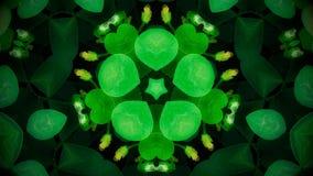 Abstrakt zieleni kwiatu mandala Zdjęcia Stock
