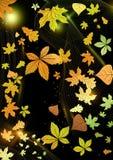 Abstrakta Autumn Background. Arkivbild