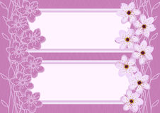 Abstrakta Cherry Blossom Background Arkivbild
