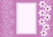 Abstrakta Cherry Blossom Background Royaltyfria Foton