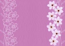 Abstrakta Cherry Blossom Background Royaltyfri Bild