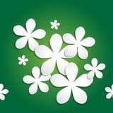 Abstrakta 3d papierowego kwiatu wzór na zielonym tle Zdjęcie Stock