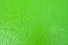 Abstrakta deszczu kropla na zielonej podłoga Obraz Stock