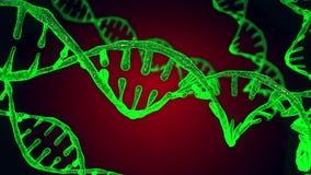 Abstrakta DNA zielony czerwony błyskotliwy dwoisty helix z głębią pole Animacja DNA budowa od debrises nauka zbiory