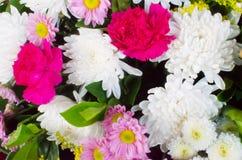 Abstrakta färgrika blommabakgrunder Arkivfoton
