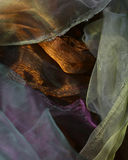 Abstrakta falowy tła organza Obrazy Stock