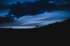 Abstrakta konturowy wizerunek nocne niebo z drzewem na horyzoncie Obraz Royalty Free