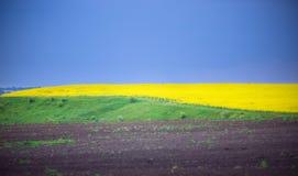 abstrakta krajobrazu Zdjęcia Stock