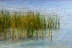 abstrakta krajobrazu Obrazy Stock
