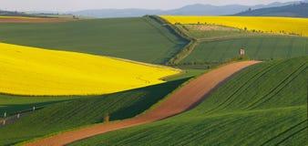 abstrakta krajobrazu Zdjęcie Royalty Free