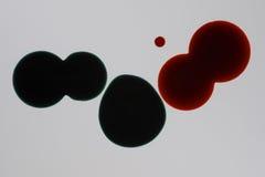 abstrakta kropel grunge atramentu wektor Zdjęcia Royalty Free