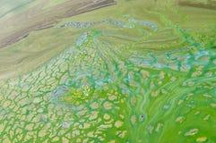 Abstrakta naturliga modeller på den ukrainska floden Dnepr som täckas av cyanobacterias Arkivbilder