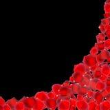 Abstrakta naturliga Rose Petals Background Realistic Vector Illustr royaltyfri illustrationer