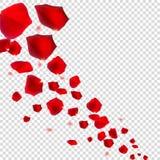 Abstrakta naturliga Rose Petals på realistisk genomskinlig bakgrund vektor illustrationer