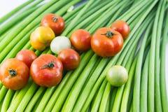 Abstrakta nya organiska grönsaker, tomaten och vitlökgräslökar flödar Arkivbilder