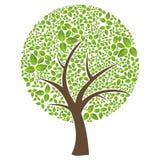 abstrakta odosobniony liść wiosna czas drzewo royalty ilustracja