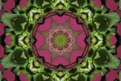 abstrakta rosa färger med den gröna prydnaden (mandala, kalejdoskopet) royaltyfri illustrationer
