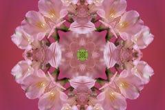 abstrakta rosa färger med den gröna prydnaden (mandala, kalejdoskopet) stock illustrationer