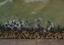 Abstrakta strzał morza bałtyckiego wybrzeże Obraz Royalty Free