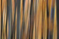 Abstrakta textured i zamazany tło Fotografia Royalty Free