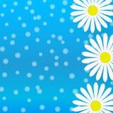 Abstrakta vita Daisy Flowers i Gradated blå bakgrund stock illustrationer