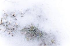 Abstrakta wzór w zimie Fotografia Stock