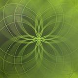 Abstrakta zielony tło z eleganckimi liniami i miękka część zamazywaliśmy wzór Obrazy Royalty Free