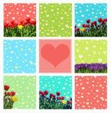 Abstraktachtergrond met tulpen en krokussen voor groet met a Royalty-vrije Stock Afbeeldingen