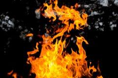Abstrakte Abbildung auf schwarzem Hintergrund für Auslegung Lizenzfreie Stockfotos